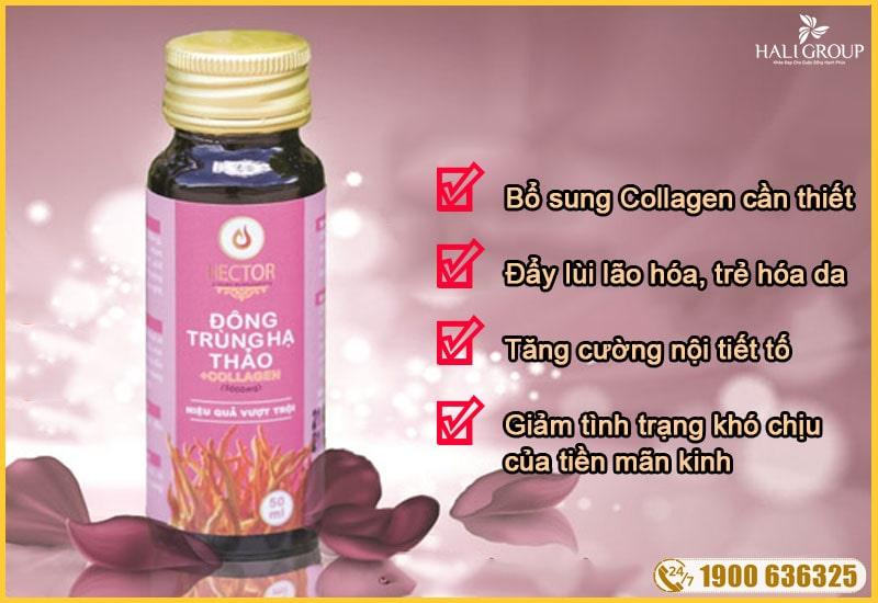 công dụng nổi bật của nước đông trùng hạ thảo collagen hector chính hãng