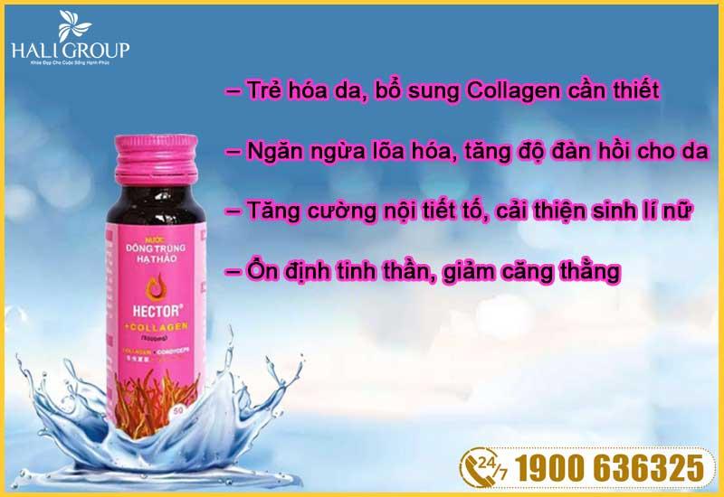 cong-dung-noi-bat-cua-nuoc-dong-trung-ha-thao-hector-collagen-chinh-hang