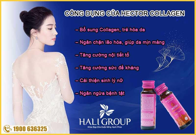 công dụng nổi bật của nước đông trùng hạ thảo hector collagen chính hãng