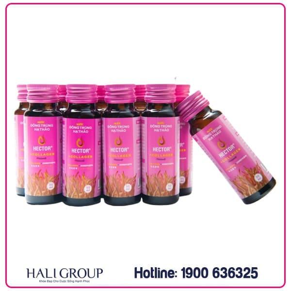 nước uống đông trùng hạ thảo collagen hector chính hãng