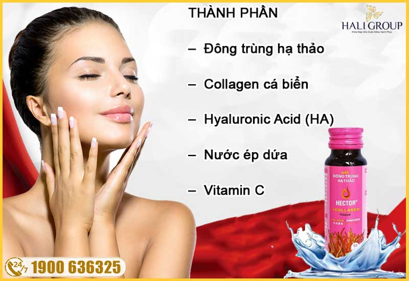 thanh-phan-cua-nuoc-dong-trung-ha-thao-collagen-hector-chinh-hang