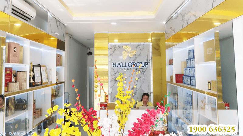 giới thiệu haligroup 04 01