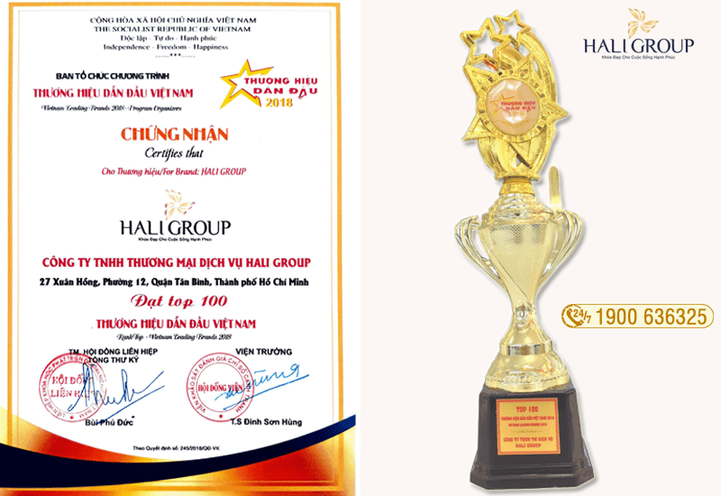 haligroup top 100 thương hiệu dẫn đầu