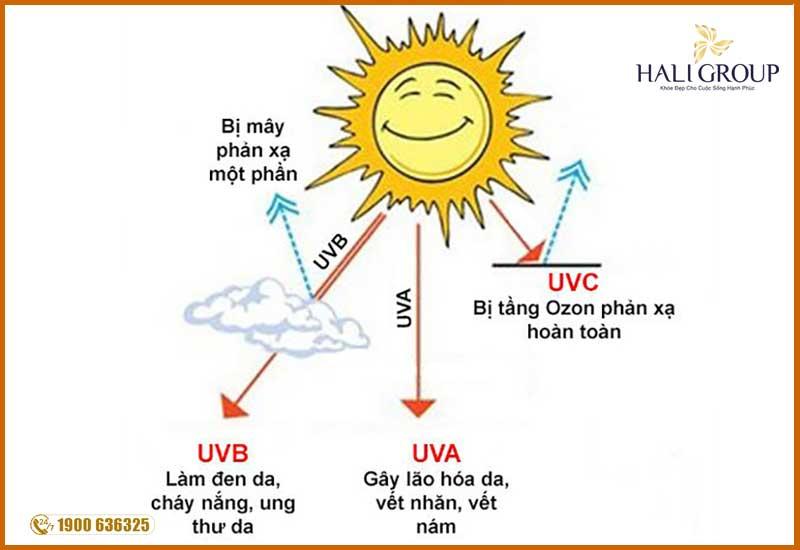 Các tia uva và uvb