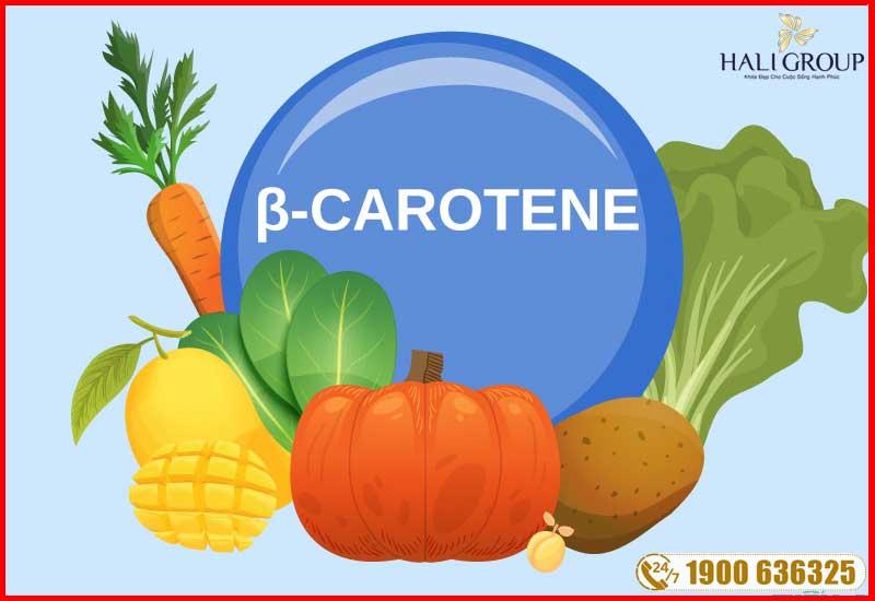 carotene cũng có trong thành phần của tinh dầu thông đỏ edally hàn quốc
