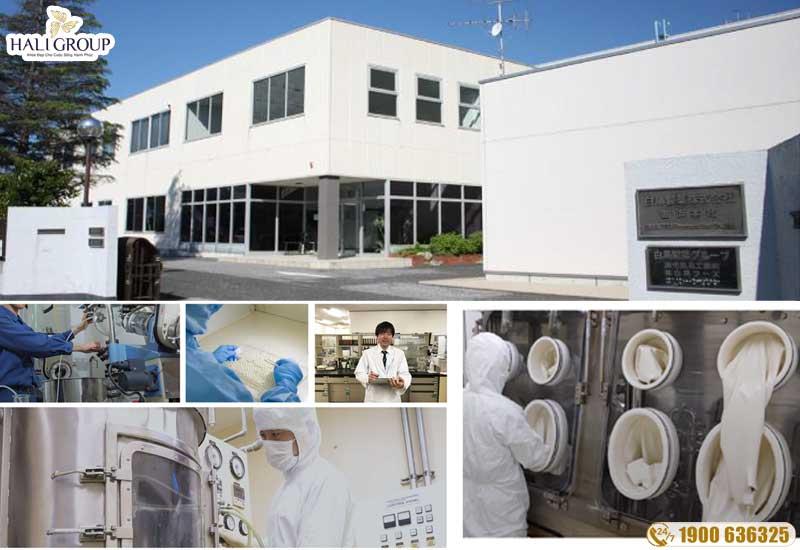 Tập đoàn Shiratori uy tín và chất lượng số 1 Nhật Bản
