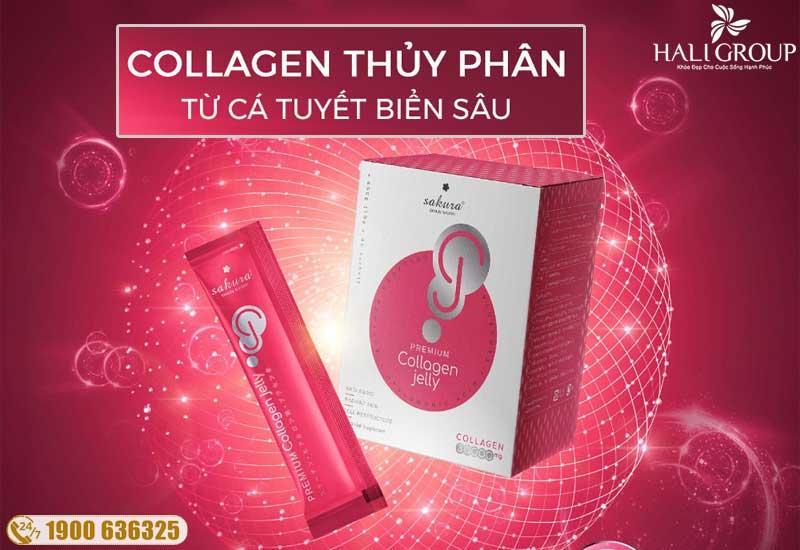 Thành phần collagen Peptide có trong thạch collagen Nhật Bản Sakura Premium
