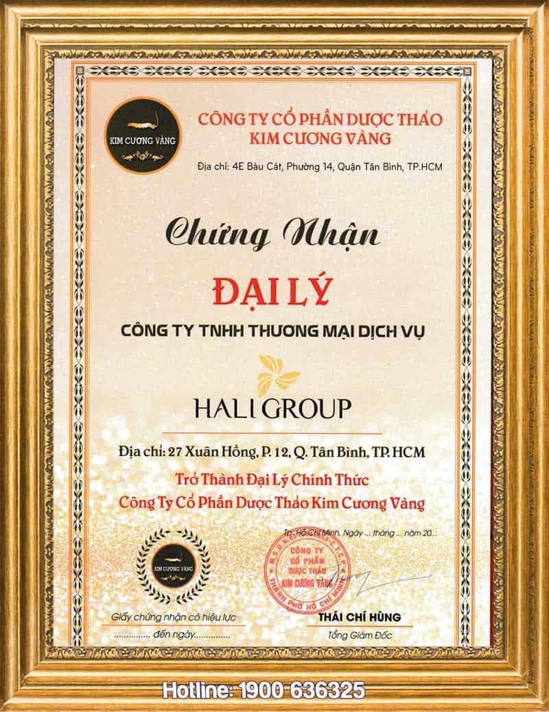 giấy chứng nhận Hali Group là nhà phân phối sản phẩm chính hãng của kim cương vàng tiến luật